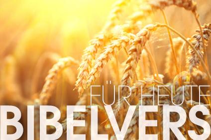 Bibelvers_Head_neu